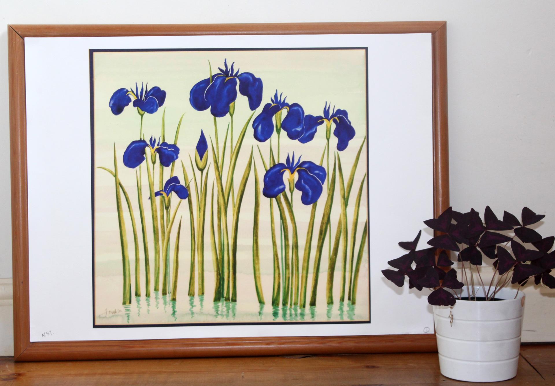 Irises_store